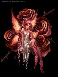 fairies lovely rose angel picture and wallpaper