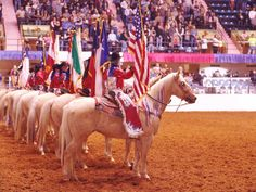 Southwestern Exposition and Fat Stock Show -- Ft. Worth, TX