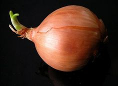 Unlike garlic, changing the intensity of onion is less a matter of how much you use or how you cut it and more a matter of how you cook it Growing Vegetables, Fruits And Vegetables, Veggies, Onion Benefits Health, Food Change, Cooking Onions, In Natura, Onion Soup, French Onion