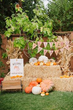 Fall Party Themes that are perfect for birthdays and baby showers. Fall Party Ideas you will love. With the season's change comes new fall party trends. Fall 1st Birthdays, Pumpkin 1st Birthdays, Pumpkin Birthday Parties, Picnic Birthday, Harvest Birthday Party, Fall Harvest Party, Backyard Birthday, Thanksgiving Parties, Thanksgiving Birthday