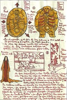 Guillermo Del Toro's notebook — I don't think this man's brain ever shuts down. His sketchbook pages are all filled with incredible ideas....