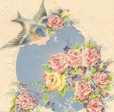 bluebirds on vintage cards Vintage Birthday Cards, Vintage Greeting Cards, Vintage Postcards, Vintage Images, Shabby, Gif Animé, Get Well Cards, Background Pictures, Pet Birds