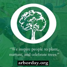 Cure Long-term Illness - Arbor Day Foundation Cure Long-term Illness - My long term illness is finally going away, and I think I might have found the love of my life. Long Term Illness, Tree Information, Arbor Day Foundation, Arbour Day, Forest Illustration, Replant, Tree Forest, Green Man, Earth Day