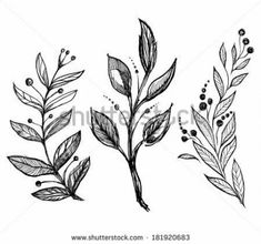 set of hand drawn ink sketch spring branch plants with leaves - vector illustration Music Tattoos, Arrow Tattoos, Feather Tattoos, Foot Tattoos, Flower Tattoos, Small Tattoos, Tattoo Sketches, Tattoo Drawings, Tattoo Arm Designs