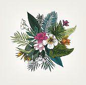 Botanical illustration(700185038): 유사이미지 - 게티이미지뱅크 Christmas Wreaths, Exotic, Bouquet, Tropical, Holiday Decor, Illustration, Flowers, Plants, Home Decor