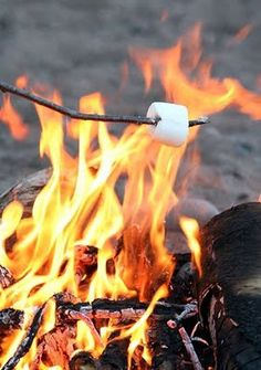 Roasting marshmallows by a fire.