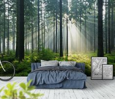 Fortryllende skov fototapet/tapet fra Happywall