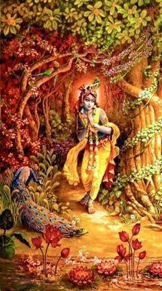 Krishna Lila, Jai Shree Krishna, Cute Krishna, Radha Krishna Love, Radhe Krishna, Lord Krishna Images, Radha Krishna Pictures, Krishna Photos, Shree Krishna Wallpapers