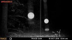 Il video sottostante girato il 16 ottobre 2015, mostra le varie fasi che documentano la materializzazione di una di queste sfere incandescenti. la fotocamera con rilevamento di movimenti montata da un gruppo di cacciatori  di Hartsville, Carolina del Sud, in quell'occasione stava monitorando i movimenti e le abitudini della selvaggina locale destinata alla cacciagione.