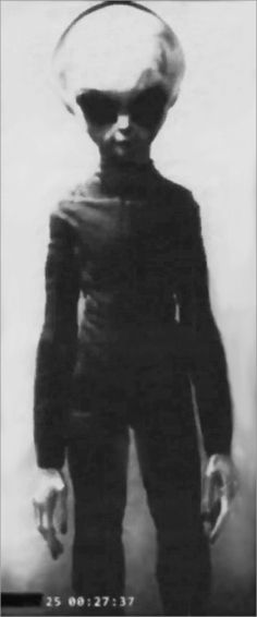 Sole survivor of the Zeta-Reticulan crew, the rest of whom gave their lives to help mankind, in the famous Roswell crash of 1947. http://www.zetatalk.com/ning/07ma2011.htm