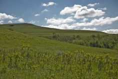 The flint hills out by Manhattan. One of my favorite things about Kansas:)