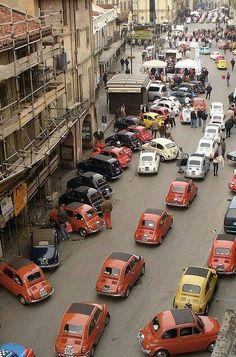 Fiat 500,s at Italy!
