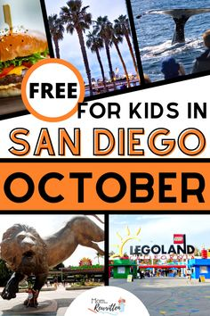 The annual fall travel event lives on for 2020, with almost 90 free activities for kids in San Diego during the entire month of October! Get tips on where to find tickets and which theme parks, museums, hotels and restaurants are participating. Get local travel advice about these free destinations including SeaWorld, San Diego Zoo, whale watching and LEGOLAND aquarium. #SanDiego #FreeTravel #BudgetTravel #TravelwithKids #FamilyTravel #TravelTips #SoCal #California #October #FallTravel San Diego Area, San Diego Beach, San Diego Zoo, Travel With Kids, Family Travel, Carlsbad San Diego, Family Vacation Destinations