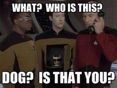 Phone dog: the sequel.