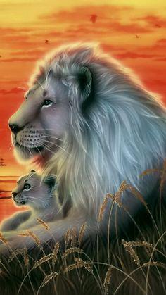 Daddy lion n his cub