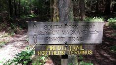 Cohutta Wilderness Hiking opportunities abound!