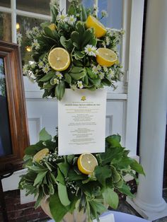 lemon topiary - Google Search