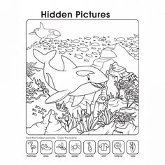 Hidden Pictures Worksheets Ocean See the category to find more printable coloring sheets. Also, you could use the search box to find what you want. Ocean Pictures, Hidden Pictures, Puzzles For Kids, Worksheets For Kids, Hidden Picture Puzzles, Ocean Activities, Camping Gifts, Activity Sheets, Wedding Quotes