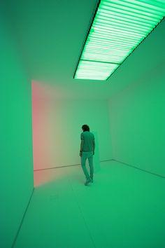 Tamara Caldera - Norte y Sur - pretty bird Popup, Shades Of Green, Pink And Green, Alien Queen, Image Film, Indie, Slytherin Aesthetic, Neon Aesthetic, Light Installation