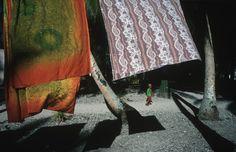 Alex Webb TOKELAU. Atafu. 2003.