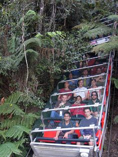 """The """"Katoomba Scenic Railway"""" is the steepest cable-driven funicular railway in the world! Australia Tours, Sydney Australia, Australia Travel, Australia Photos, Vacation Places, Places To Travel, Places To See, Vacation Rentals, Rock Pools"""