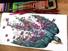 Book: Imagimorphia Pencils I used: Derwent Soft Drawing Pencils, Caran dAche…