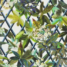 canopy - saphir wallpaper   Christian Lacroix