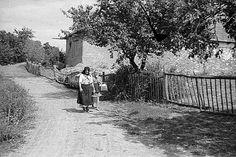 Csépléskor a munkában segítőknek a gazda felesége hozza ki az istállókhoz az ebédet hátikosárban, kannában és kézi kosárban - Szarvaskő 1950.