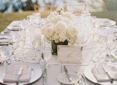 The Caneel Bay Wedding and Honeymoon Experience: The Caneel Bay Wedding of Lauren and Tommy