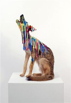 Embedded Coyote $5000 by Russ Noto