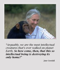 """""""Arguably, we are the most intellectual creatures that's ever walked on planet Earth.  So how come, then, that this so intellectual being is destroying its only home?"""" ~ Jane Goodall"""
