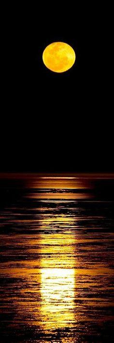 """""""A paz interior é o seu maior tesouro. Não deixe que a ansiedade venha rouba-lá, Nem permita que alguém a destrua. Seja com atitudes ou comentários. Seja você revestido da certeza,  De que a noite mais escura vai passar..."""" André Luiz"""