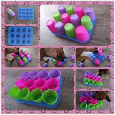 ♥ Dog Care Tips ♥  Keep your dogs mind engaged with fun games like this.
