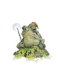 Frog Illustration, Frog Drawing, Animal Art Prints, Frog Art, Art Prints For Home, Frog And Toad, Whimsical Art, Woodland Animals, Faeries