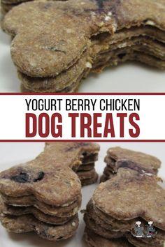 yogurt berry chicken Dog Treat Recipes, Fruit Recipes, Dog Food Recipes, Homemade Dog Treats, Healthy Dog Treats, Chicken For Dogs, Biscuit Recipe, Fun Diy, Dog Stuff