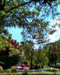GARDEN. PARK .  #photo#cengizarat. #garden#park#bahçe#photography#sun #treee#colors#fotoğraf#çiçek#owers #gorgeous#muhteşen#sopretty#sun #çok#güzel#fotobest#photo#arts. http://turkrazzi.com/ipost/1521192488366174959/?code=BUcXIIwDvLv
