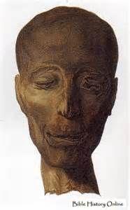 Mummy Of Queen Ahmose Nefertari Mother Amenhotep I Guides List Add ...