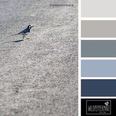 Kühle #Farbpalette, Kühle Sommerfarben, Grau, Blau, Schwazr,  Farbinspiration //