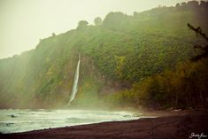 WAIPIO, HI by Sarah Lee