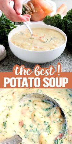 The Best Potato Soup…a thick , creamy, hearty soup that's absolutely delicious! The Best Potato Soup…a thick , creamy, hearty soup that's absolutely delicious! Best Soup Recipes, Healthy Dinner Recipes, Crockpot Recipes, Vegetarian Recipes, Cooking Recipes, Soft Food Recipes, Simple Soup Recipes, Healthy Potato Soup, Creamy Soup Recipes