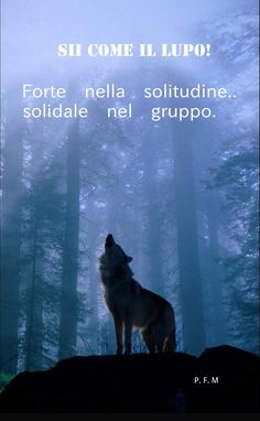 Inspirational Phrases, Motivational Quotes, Wolf Quotes, Italian Quotes, Love You, My Love, Positive Mindset, Movie Quotes, Teen Wolf