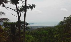 That is one of many beach in Pacitan, when you see a long for that you find Indian Ocean