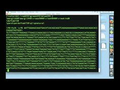 """Using the Terminal 1: """"grep"""" and """"less"""" - YouTube"""