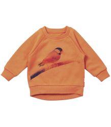 Munster Kids Sweat Lil Birdy - LAST SIZE ! Lil Missie Munster - Sweat 'Lil Birdy'