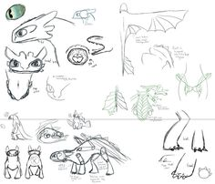 Night Fury anatomy by Kudalyn on DeviantART Drawing Cartoon Faces, Drawing People Faces, Easy Disney Drawings, Cool Drawings, Pencil Drawings, Toothless Drawing, Dragon Anatomy, Httyd Dragons, Httyd 3