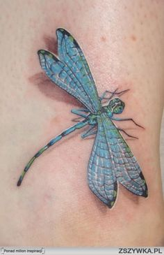 dragonfly tattoos images - Google Search