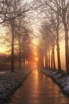 great misty sunrise