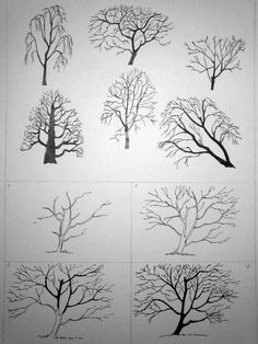 (Oh, I draw trees too! It's like the only thing I draw, when I draw and I need to expand my art skills. I used to be able to draw all sorts of stuff. *sigh*~Sarah E Smith) Drawing Skills, Drawing Techniques, Drawing Sketches, Sketching, Manga Drawing, Pencil Art, Pencil Drawings, Art Drawings, Plant Drawing
