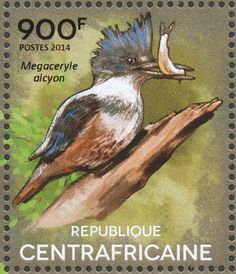 Belted Kingfisher stamps - mainly images - gallery format. birdtheme.org