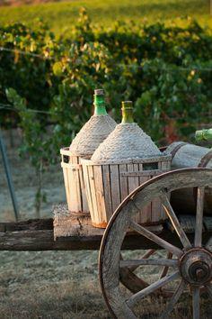 Italiaanse taferelen in de wijngaard